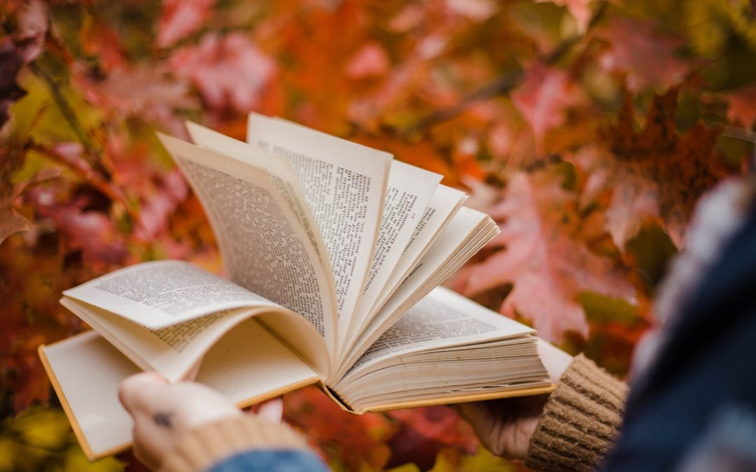 14 Books I'm Excited to Read This Fall